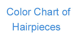 Human Hair Color Chart for Lace Closure Hair Pieces