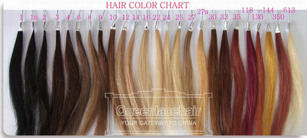 Color chart for hair weaves and hair extensions human hair color human hair supplier pmusecretfo Choice Image